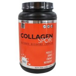 Neocell Laboratories Collagen Sport Ultimate Recovery Complex French Vanilla
