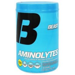 Beast Sports Nutrition Aminolytes Advanced Amino Matrix Pineapple 413 Grams