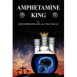 Booktopia eBooks - Amphetamine King by Alexander Gonzales. Download the eBook, 9781456748241.