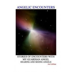 Booktopia eBooks - Angelic Encounters by Joe Hammond Callihan. Download the eBook, 9780982184530.