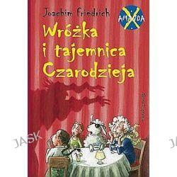 Amanda X. Wróżka i tajemnica czarodzieja - Joachim Friedrich