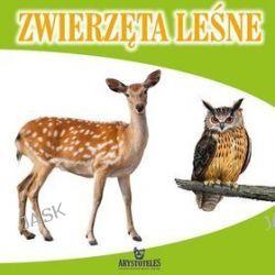 Zwierzęta leśne - Małgorzata Szewczyk