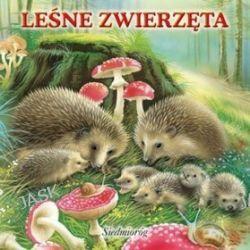 Leśne zwierzęta -
