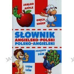 Słownik angielsko-polski, polsko-angielski - Bartłomiej Paszylk