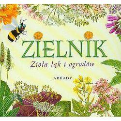 Zielnik. Zioła łąk i ogrodów - Henryk Garbarczyk, Henryk Grabarczyk