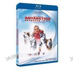 Filme: Antarctica - Gefangen im Eis  von Frank Marshall mit Paul Walker,Moon Bloodgood,Jason Biggs,Gerard Plunkett,August Schellenberg