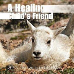 A Healing Child's Friend by Vic Jan Fegley Hanson, 9781441513588.
