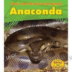 Anaconda, Day in the Life: Rain Forest Animals (Library) by Anita Ganeri, 9781432941123.