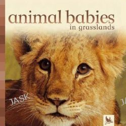 Animal Babies in Grasslands, Animal Babies (Kingfisher) by Kingfisher Books, 9780753459430.
