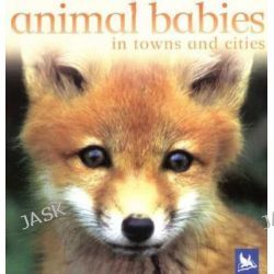 Animal Babies in Towns and Cities, Animal Babies (Kingfisher) by Kingfisher Books, 9780753458419.