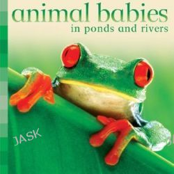Animal Babies in Ponds and Rivers, Animal Babies by Kingfisher Books, 9780753460597.