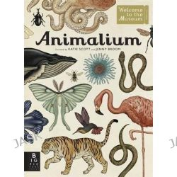 Animalium, Welcome to the Museum by Jenny Broom, 9781783700608.