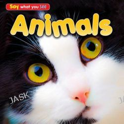 Animals, Early Years: Say What You See by Rebecca Rissman, 9781406251456.