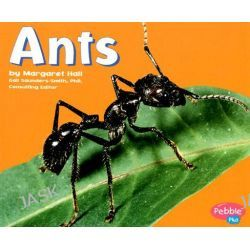 Ants, Bugs Bugs Bugs by Margaret C Hall, 9780736850940.