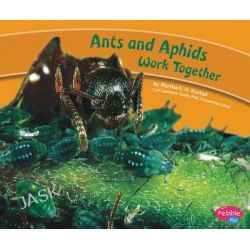 Ants and Aphids Work Together, Animals Working Together by Martha E H Rustad, 9781429652988.