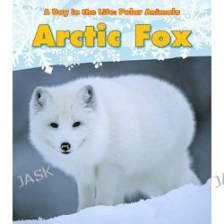 Arctic Fox, Day in the Life: Polar Animals (Paperback) by Katie Marsico, 9781432953362.