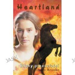Blizny przeszłości. Heartland 7
