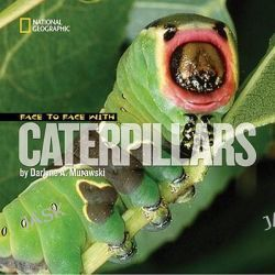 Face to Face with Caterpillars, Face to Face by Darlyne Murawski, 9781426304736.