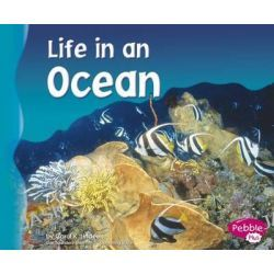Life in an Ocean, Pebble Plus: Living in a Biome by Carol K Lindeen, 9780736834063.