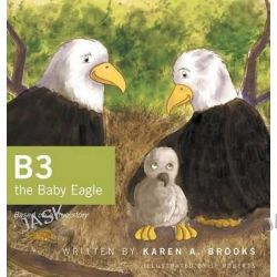 B3 the Baby Eagle, Based on a True Story by Karen a Brooks, 9781460259474.