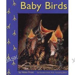 Baby Birds, Birds by Helen Frost, 9780736881937.