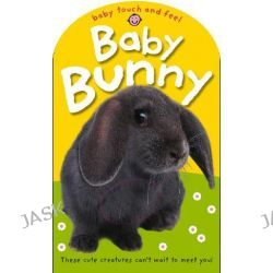 Baby Bunny, Baby Touch and Feel by Roger Priddy, 9781843328278.