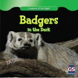 Badgers in the Dark, Creatures of the Night by Sofia Maximus, 9781433964800.