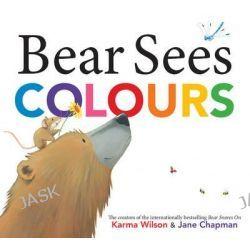 Bear Sees Colours by Karma Wilson, 9781471123245.