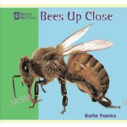 Bees Up Close, Nature Up Close by Katie Franks, 9781404241374.