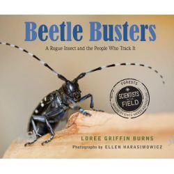 Beetle Busters, A Rogue Insect and the People Who Track It by Loree Griffin Burns, 9780547792675.