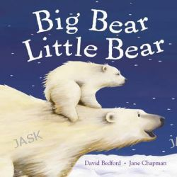Big Bear Little Bear by David Bedford, 9781848952478.
