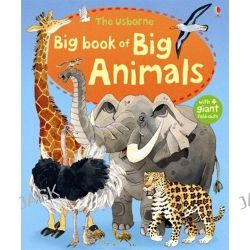 Big Book of Big Animals, Big Books of Big Things by Hazel Maskell, 9781409507994.