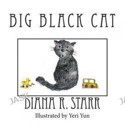 Big Black Cat by Diana R Starr, 9781491038574.