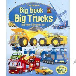 Big Book of Big Trucks, Big Books of Big Things by Megan Cullis, 9781409523260.