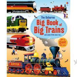 Big Book of Big Trains, Big Books of Big Things by Megan Cullis, 9781409549895.