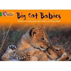 Big Cat Babies, Band 05/Green by Jonathan Scott, 9780007472383.