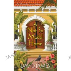 A Not So Model Home, Amanda Thorne Mysteries by David James, 9780758206411.