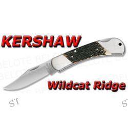 Kershaw Wildcat Ridge Pocket Knife Jigged Bone 3140JB