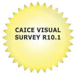 Autodesk CAiCE Visual Survey R10.1 (Download) 25201-011452-9000