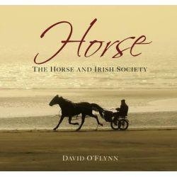 Horse, The Horse and Irish Society by David O'Flynn, 9781845887063.