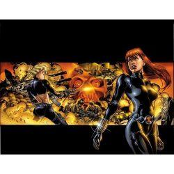 Black Widow, The Itsy-Bitsy Spider by Devin K. Grayson, 9780785158271.