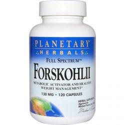 Planetary Herbals, Forskohlii, Full Spectrum, 130 mg, 120 Capsules