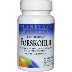 Planetary Herbals, Forskohlii, Full Spectrum, 130 mg, 60 Capsules