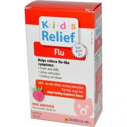Homeolab USA, Kids Relief, Flu for Kids 2+, Raspberry Flavor, 0.85 fl oz (25 ml)