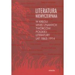 Literatura niewyczerpana. W kręgu mniej znanych twórców polskiej literatury lat 1863-1914