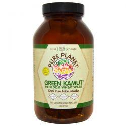 Pure Planet, Green Kamut, Heirloom Wheatgrass, 240 Veggie Caps