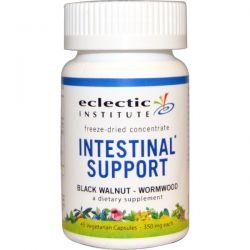 Eclectic Institute, Intestinal Support, Black Walnut - Wormwood, 350 mg, 45 Veggie Caps