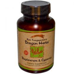 Dragon Herbs, Bupleurum & Cyperus, 500 mg, 100 Veggie Caps
