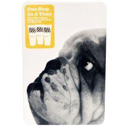Bulldog Skincare For Men, One Step At a Time, Travel Size Original Moisturiser, Face Wash and Shave Gel, 1 Kit