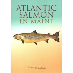Atlantic Salmon in Maine by Committee on Atlantic Salmon in Maine, 9780309091350.